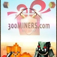 300miners