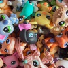 ~ Littlest Pet Shop~