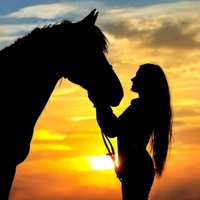 My horses and me