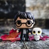 Funko pop (Harry Potter)
