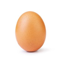 word_record_egg