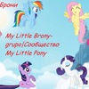 My Little Brony-grupo|Сообщество My Little Pony