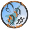 Virtual Aerobatic Team =Baltic Bees=