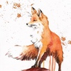 ~ХЛО~  Official group of fox packs