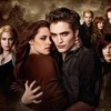 For fans of the movie Twilight
