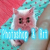 Photoshop & Art